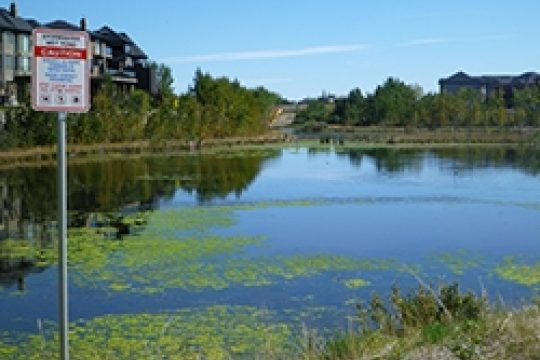 Designing for Tomorrow 2018: The Future of Stormwater Management in Alberta