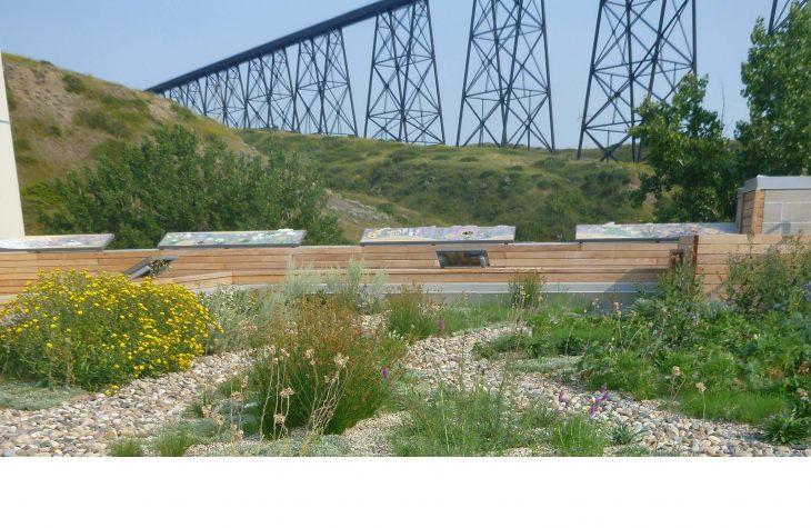 green-roof-helen-schuler-low.jpg#asset:206:mainArticleImageExpandableHeight
