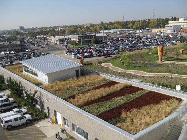 wc_green_roof.jpg#asset:356:mainArticleImageExpandableHeight